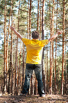 Man In The Pine Forest Stock Photos - Image: 14421463