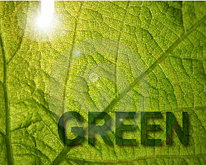 Green Royalty Free Stock Images - Image: 14421639