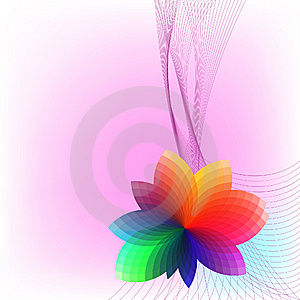 Colorful Flower. Stock Images - Image: 14424994