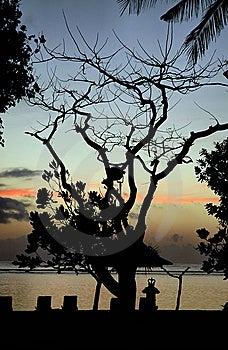 Bali - Nusa Dua Sunrise Stock Photos - Image: 14426023