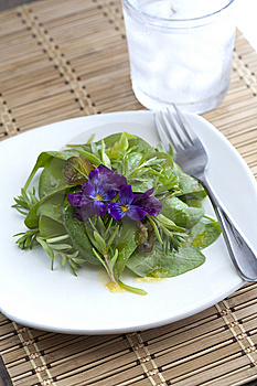 Fresh Spinach Salad. Royalty Free Stock Photography - Image: 14427857