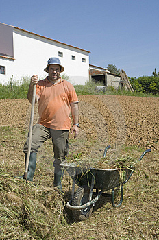 Farmer Working On The Farm Stock Photo - Image: 14433810