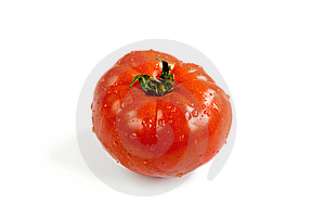 Tomate Fraîche Et Humide Photographie stock - Image: 14439202