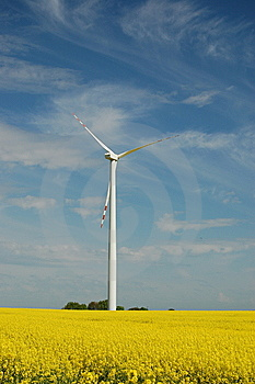 Wind Turbine On Field Of Oilseed Rape Stock Image - Image: 14439351