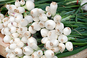 Bunches Of White Onions Royalty Free Stock Image - Image: 14441106