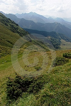 Appealing Point Of View In Pyrenean'smountain Stock Photos - Image: 14461463