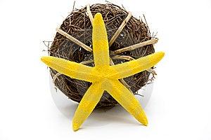 Yellow Star Stock Photo - Image: 14467310