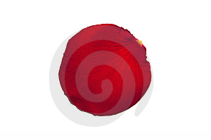 Red Rose Petal Royalty Free Stock Images - Image: 14472059