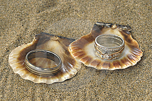 Wedding Rings Royalty Free Stock Photo - Image: 14474925