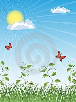 Summer Background Stock Images - Image: 14480094