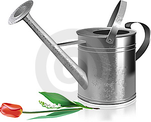 Watering Can And Flowers. Stock Photo - Image: 14481010