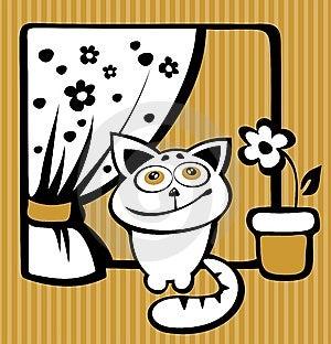 Happy Cat Stock Photos - Image: 14494293