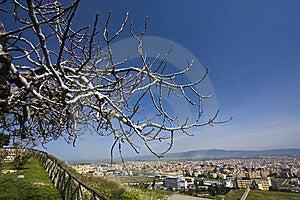 View Of Cagliari City Stock Photo - Image: 14494800