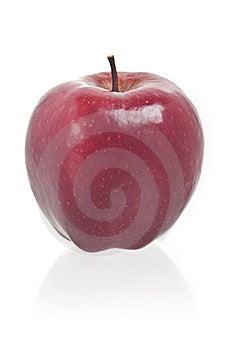 Apple Stock Photo - Image: 14498590
