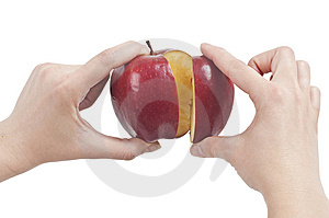 Holding Red Apple Stock Photos - Image: 14498593