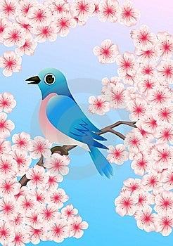 Blue Bird Royalty Free Stock Photo - Image: 14503655