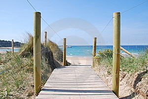 Going To The Beach Royalty Free Stock Photography - Image: 14505017