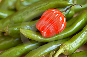 Red Chili On Green Stock Image - Image: 14505831