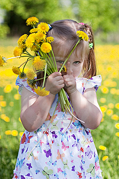 Little Girl With Dandelions Royalty Free Stock Photos - Image: 14507178