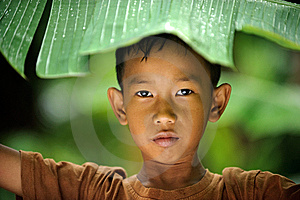 Child Hiding From Rain Royalty Free Stock Photo - Image: 14508715