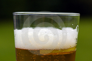 Glass Beer Or Lager,in The Restaurant Royalty Free Stock Images - Image: 14514939
