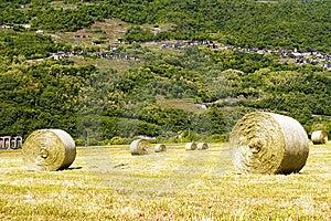 Lawn Stock Image - Image: 14521111