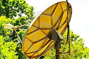 Dish Royalty Free Stock Photo - Image: 14522325