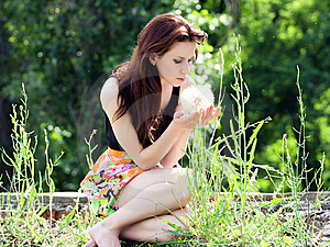 Beautiful Girl Stock Photos - Image: 14530683