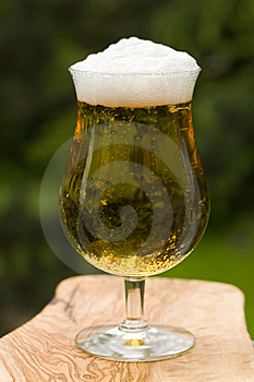 Glass Beer Or Lager,in The Restaurant Royalty Free Stock Images - Image: 14536299