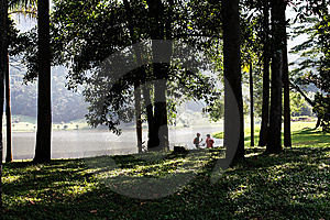 Cyclists, Botanical Garden Royalty Free Stock Photos - Image: 14556798