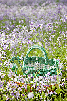 Picnic Basket Stock Photography - Image: 14569602