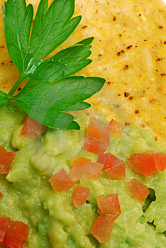 Close Up Of Guacamole And Corn Chip Stock Photos - Image: 14575183