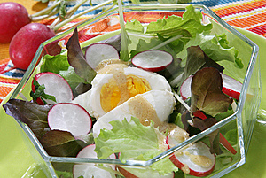 Fresh Summer Salad Stock Photos - Image: 14576713