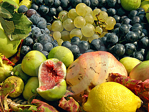 Fruit Collection (grapes, Figs, Citrus) Stock Photo - Image: 14577730