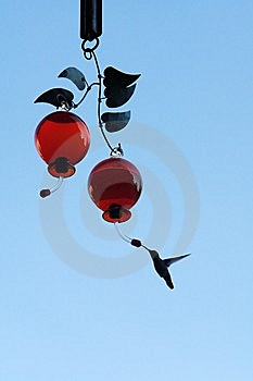 HUMMINGBIRD FEEDDING Stock Photo - Image: 14578490