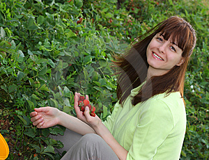 A Smiling Woman Picking Strawberries Royalty Free Stock Photos - Image: 14580498