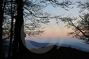 Silhouetted Tree In Mountains Stock Photography - Image: 14582012