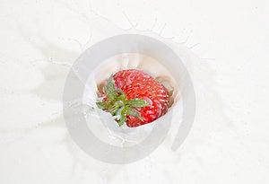 Fresh Strawberry Splashing Into Milk Royalty Free Stock Image - Image: 14582056