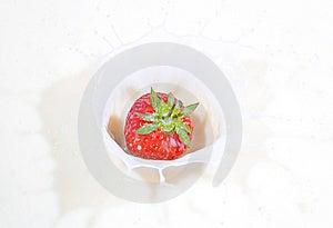 Fresh Strawberry Splashing Into Milk Stock Image - Image: 14582061
