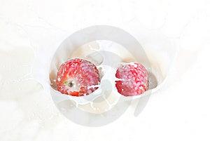 A Couple Of Fresh Strawberries Splashing Into Milk Royalty Free Stock Photo - Image: 14582065