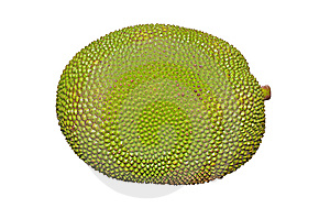 Jack Fruit Stock Photos - Image: 14584833