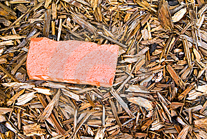 Red Brick In Mulch Stock Photo - Image: 14587990