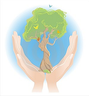 Tree In Careful Hands Stock Photos - Image: 14597553