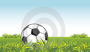 Soccer Ball In The Grass Stock Images - Image: 14597684