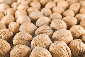 Walnuts Stock Images - Image: 1467134