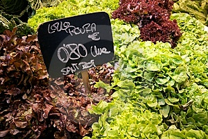 Lettuce Market Stock Photos - Image: 14603103