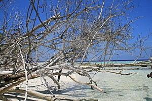 Asia,Maldive Atoll Uninhabited Stock Photography - Image: 14603432