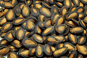 Seeds Of Watermelon. Stock Photography - Image: 14604532