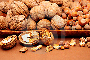 Walnut And Hazelnut Royalty Free Stock Images - Image: 14605939