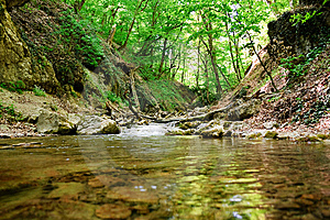Mountain Spring Stock Image - Image: 14627001